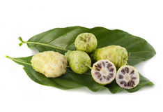 Noni fruits Royalty Free Stock Photos