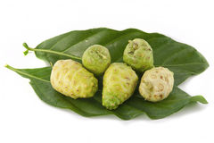 Noni fruits Royalty Free Stock Photo