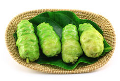 Noni fruits in basket Stock Image
