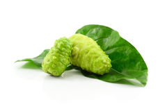 Noni fruits on white background. Royalty Free Stock Photography