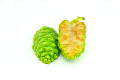 Noni Herb Royalty Free Stock Image