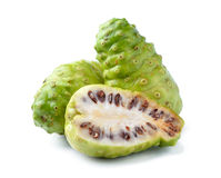 Noni Indian Mulberry fruit Royalty Free Stock Image