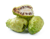 Noni Indian Mulberry fruit Stock Image