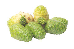 Noni Stock Images