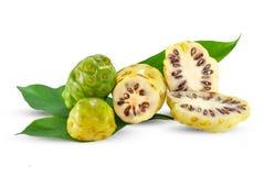 Noni lub Morinda owoc odizolowywać na bielu fotografia stock