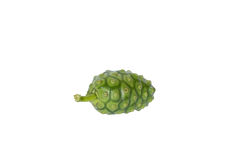 Noni (Morinda citrifolia) Fruit. On white background Stock Photography