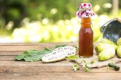 Noni owoc i noni sok Owoc dla zdrowie i ziele Fotografia Stock