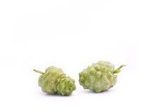 Noni owoc, Morinda citrifolia Zdjęcie Stock