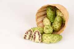 Noni, Thailand herbs with medicinal properties. Royalty Free Stock Image