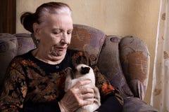 Nonna e gatto Immagini Stock Libere da Diritti