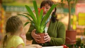 Nonna e nipote al centro commerciale Hanno molti fiori di fiuto di divertimento stock footage