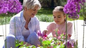 Nonna e ragazza che piantano i fiori al giardino video d archivio