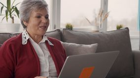 Nonna pensionata che parla con nipoti sul computer portatile archivi video