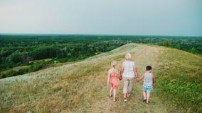Nonna per le mani con due nipoti - una ragazza e un ragazzo cammina attraverso la campagna rurale vivace back archivi video