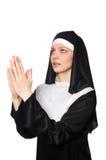 Nonne auf dem weißen Hintergrund Lizenzfreie Stockfotos