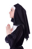 Nonne d'isolement Photo stock