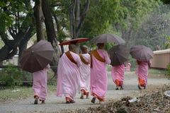 NONNE DE L'ASIE MYANMAR NYAUNGSHWE Photo libre de droits