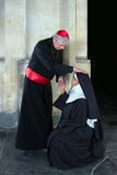 Nonne saluant le cardinal Image stock