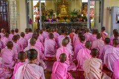 Nonnen die in roze robes voor het Beeld van Boedha scanderen royalty-vrije stock foto