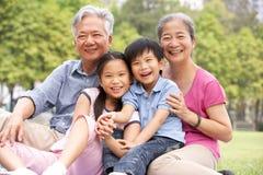 Nonni cinesi che si siedono con i nipoti immagine stock