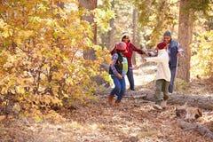 Nonni con i bambini che camminano attraverso il terreno boscoso di caduta Immagini Stock Libere da Diritti