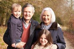Nonni con i nipoti sulla passeggiata in campagna Fotografia Stock Libera da Diritti