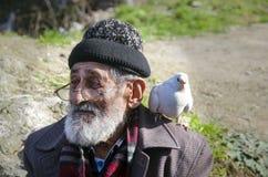 Nonno bianco e piccioni barbuti amichevoli Fotografia Stock