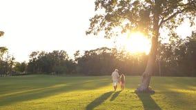Nonno con il bambino che cammina sull'erba verde stock footage