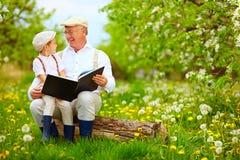 Nonno con il libro di lettura del nipote nel giardino di primavera Immagine Stock Libera da Diritti