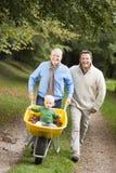 Nonno con la spinta del figlio e del nipote wheelbar Immagine Stock Libera da Diritti