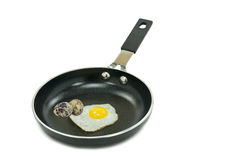 Nonstick coated pan with fried  quail egg Stock Photography