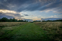 Nonsuch Park Dog Walker. A dog walker in Nonsuch Park Surrey Royalty Free Stock Photos
