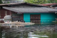 Nonthaburi-Flut in Lebensstil Thailands 2011-The von Leuten in mas Stockfotos