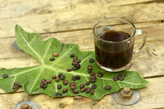 Nontoxic black coffee and coffee bean on elephant  Royalty Free Stock Photography