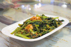 Nonya Kangkung Blachan with Prawns Royalty Free Stock Photography