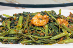 Nonya Kangkung Blachan with Prawns Closeup. Nonya Peranakan Kangkung Vegetable Blachan Sambal Paste Stir Fry with Prawns Dish Closeup Royalty Free Stock Photo