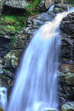 Noocksack在Mt附近下跌 贝克,华盛顿州 免版税库存图片