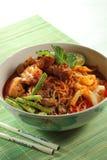 noodle κάρρυ Στοκ φωτογραφία με δικαίωμα ελεύθερης χρήσης