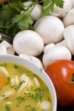 noodle κοτόπουλου σούπα Στοκ Εικόνες