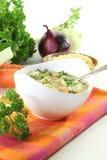 noodle σούπα μαϊντανού Στοκ φωτογραφία με δικαίωμα ελεύθερης χρήσης