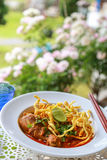 Noodle in Chicken Curry. A Noodle in Chicken Curry Stock Images