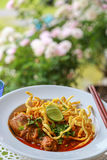 Noodle in Chicken Curry. Thai food Royalty Free Stock Photos