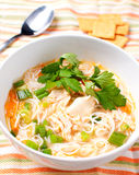 Noodle and chicken meat soup Stock Photography