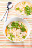 Noodle chicken soup vertical Royalty Free Stock Image