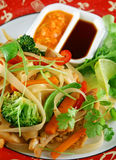 Noodle Chicken Stirfry Royalty Free Stock Images
