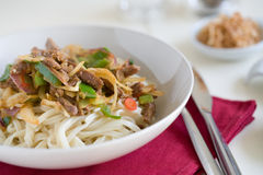 Noodle dish Royalty Free Stock Photos