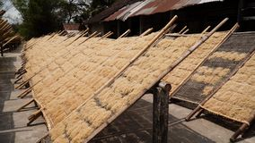Noodle factory in Bantul, Yogyakarta, Indonesia. Dle drying in sun at dle factory in indonesia Bantul, Yogyakarta, Indonesia royalty free stock photos