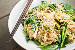 Noodle food created Royalty Free Stock Photos