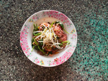 Noodle with pork in soy sauced Royalty Free Stock Photography