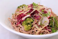 Noodle and red cabbage Royalty Free Stock Photos